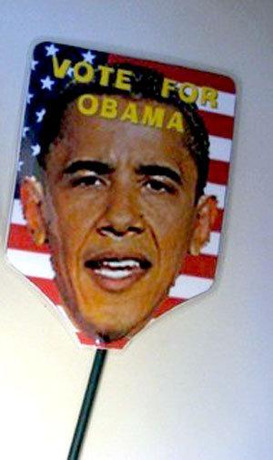 ObamaSwatter